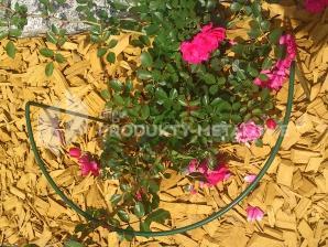 Podpora do kwiatów Typ M H=70 cm komplet 2 sztuki