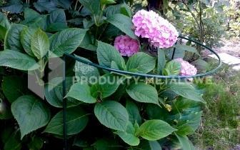 Podpora do kwiatów  DUŻA Typ M H=70 cm średnica 50 cm
